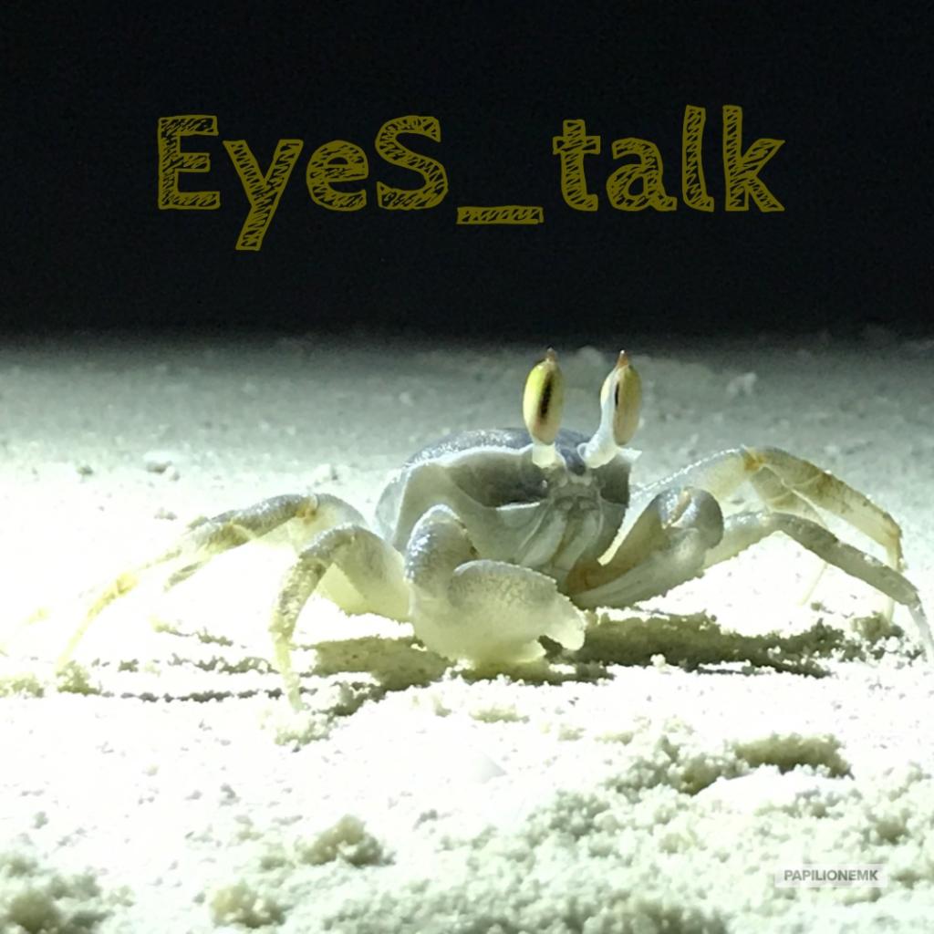 papilionemK, ghost crab, hermit crab